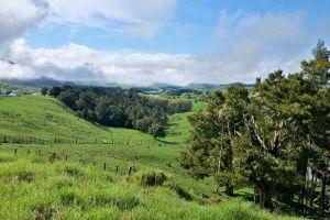 Property in Maungaturoto - $615,000