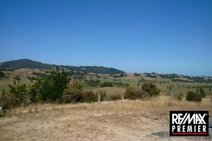 Property in Dargaville Surrounds - Negotiation